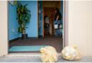 46 trường học đóng cửa vì virus lạ